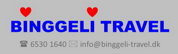 Binggeli Travel